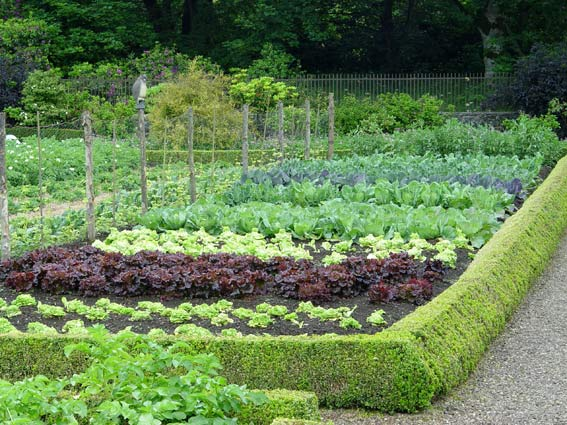 Get a jump on cool season veggies preen for Vegetable garden ideas