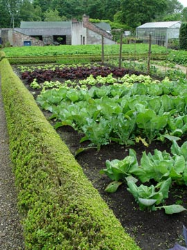 Hot trends in gardening for 2012 preen for How to use preen in vegetable garden