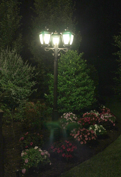Light Up Your Landscape Preen