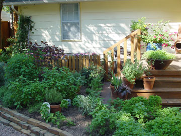 Deckside herb garden