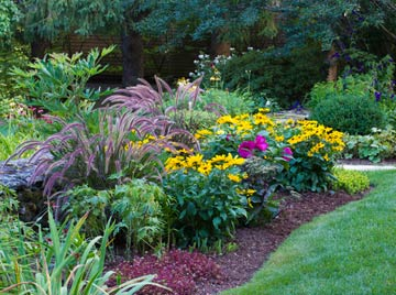 use preen and mulch to control weeds