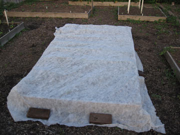 Protected vegetable garden bed.