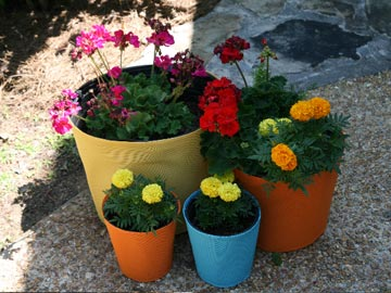 Slipcolors pot covers