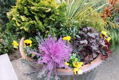 Fall pot with pansies, ornamental kale and coralbells