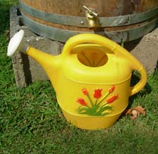 rain barrell with watering can