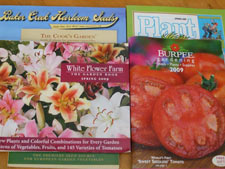 Mail-order catalogs