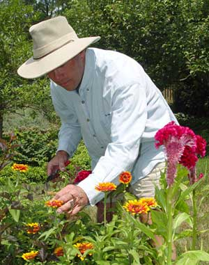 Reduce sunburn and bug bites in the garden by wearing a wide-brimmed hat and covering up as much as possible with light-weight clothing.