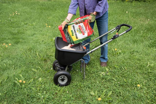 You can treat lawn weeds in the summer months with Preen Lawn Weed Control.