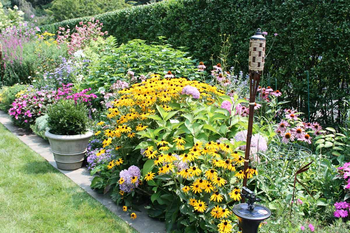 Diverse perennial bed