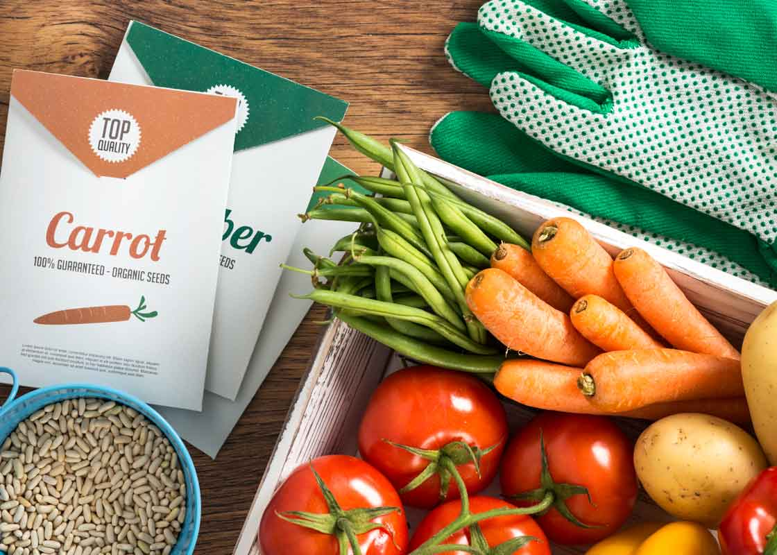 Fresh veggies and seed packets