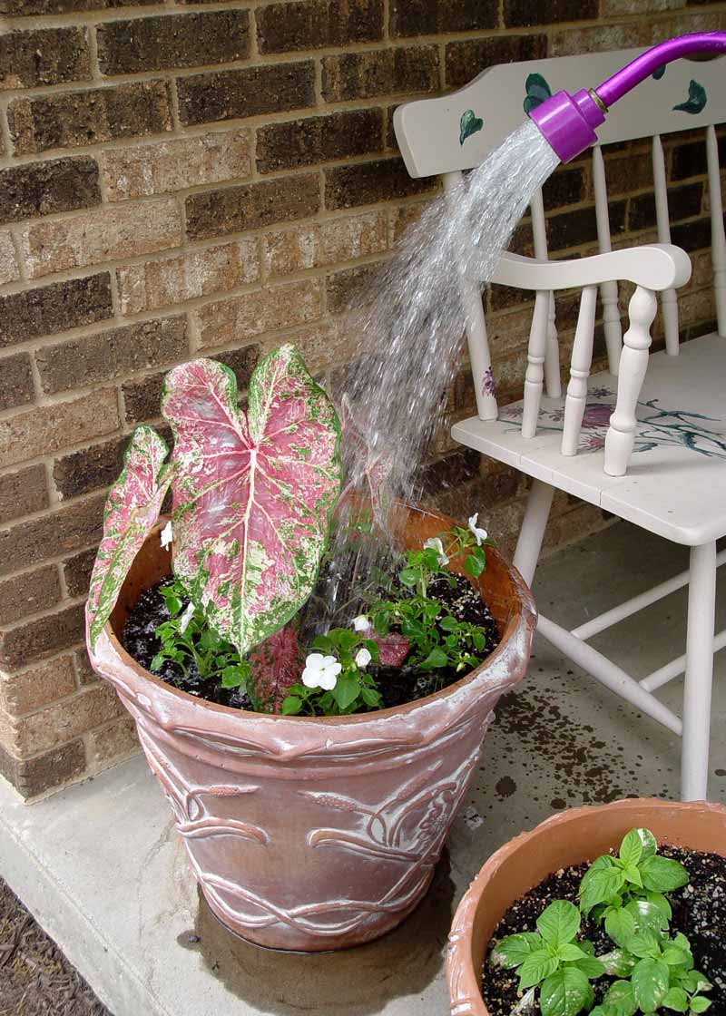 Water seeping from flower pot