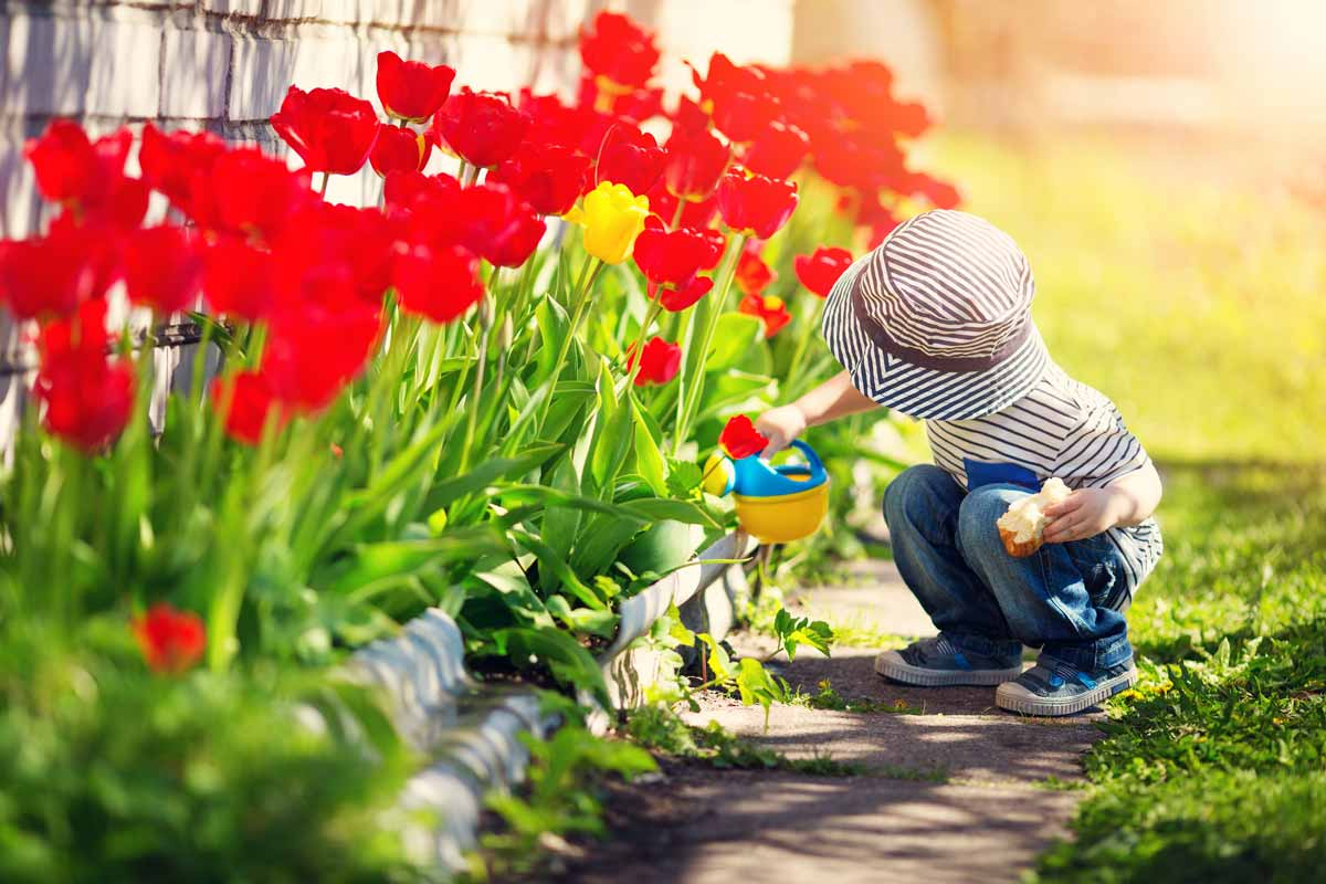 Child with red tulips