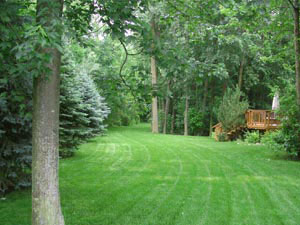Preen products for use in lawns and hardscapes